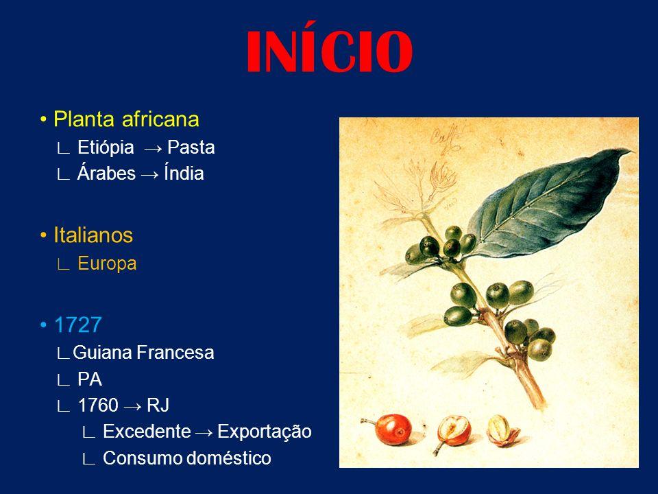 INÍCIO • Planta africana • Italianos • 1727 ∟ Etiópia → Pasta
