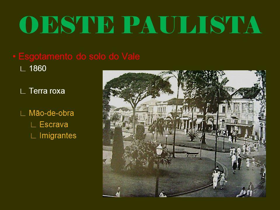 OESTE PAULISTA • Esgotamento do solo do Vale ∟ 1860 ∟ Terra roxa ∟ Mão-de-obra ∟ Escrava ∟ Imigrantes