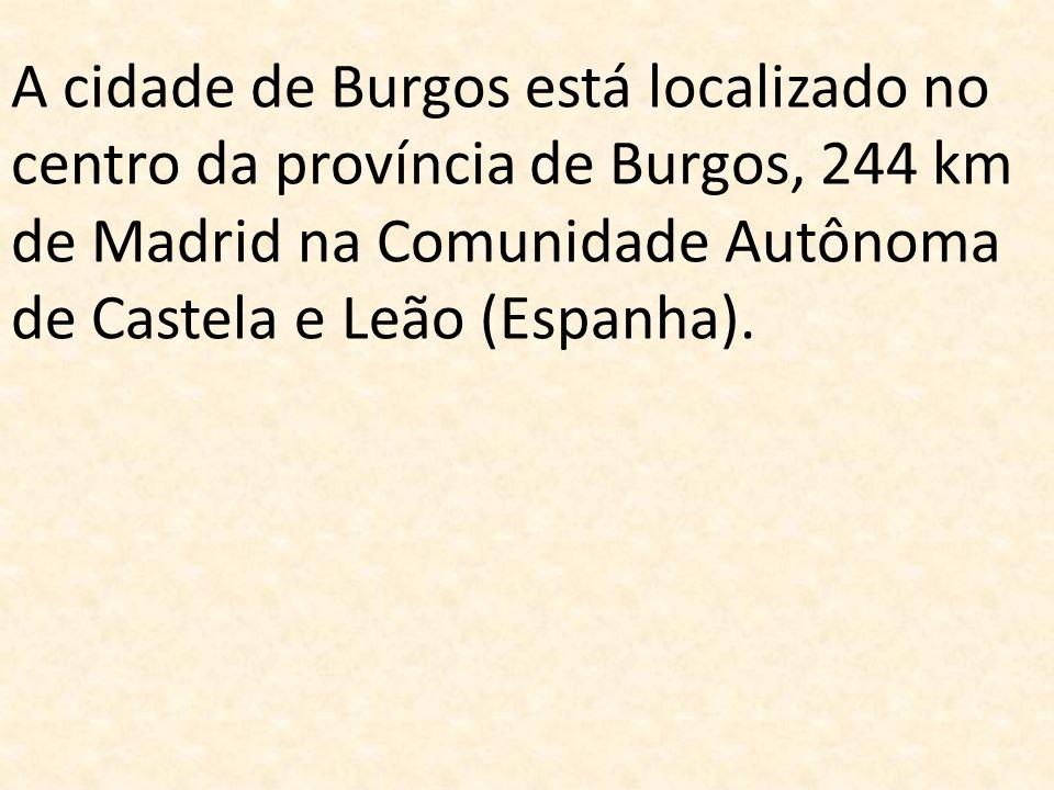 A cidade de Burgos está localizado no centro da província de Burgos, 244 km de Madrid na Comunidade Autônoma de Castela e Leão (Espanha).