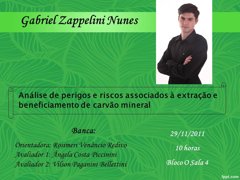 Gabriel Zappelini Nunes