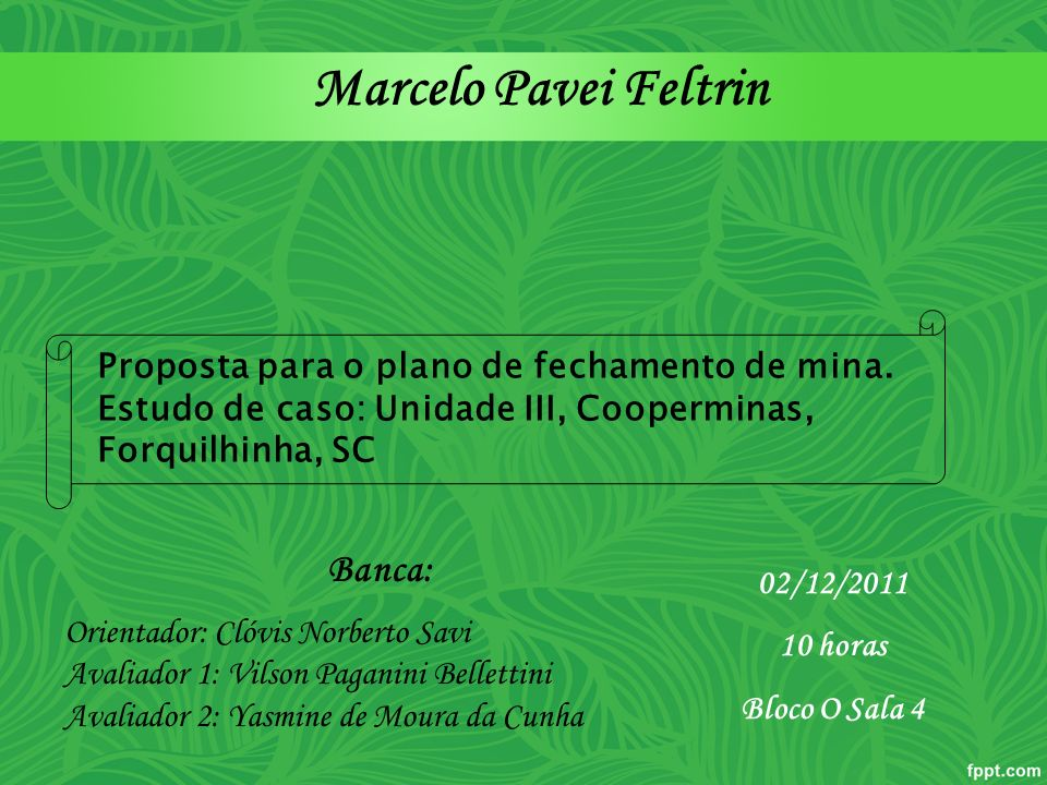 Marcelo Pavei Feltrin Banca: