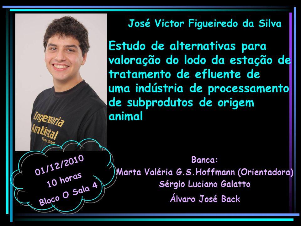 José Victor Figueiredo da Silva