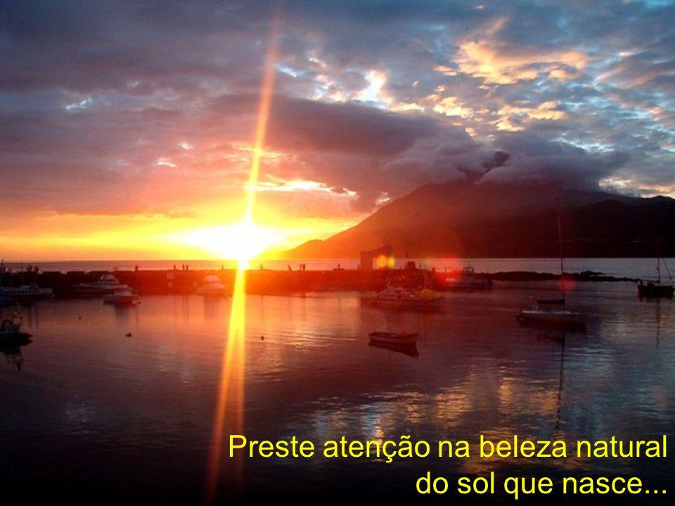 Preste atenção na beleza natural do sol que nasce...
