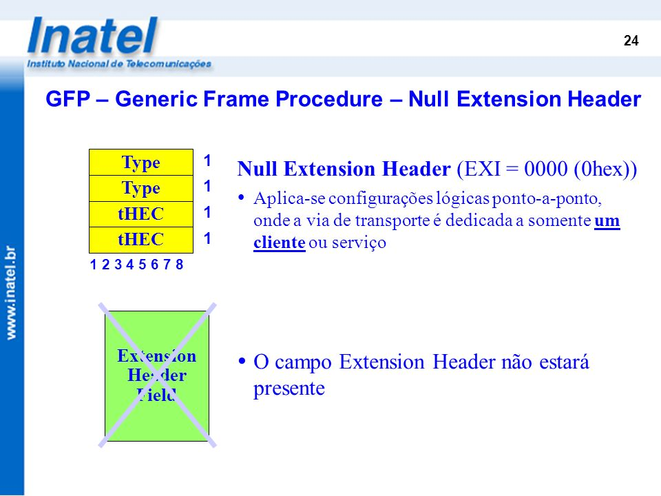 GFP – Generic Frame Procedure – Null Extension Header