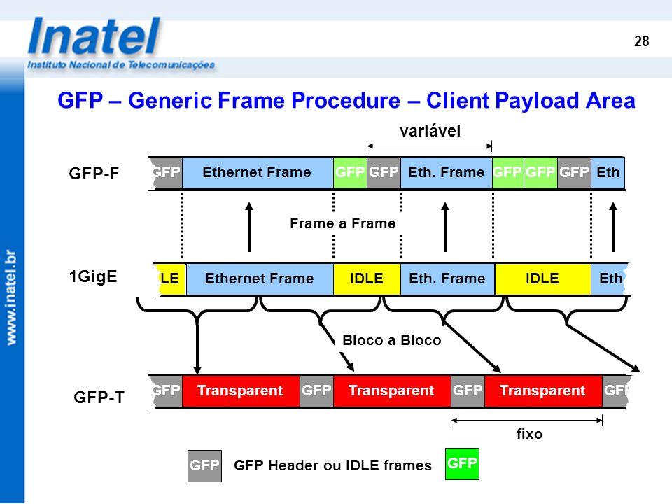 GFP Header ou IDLE frames