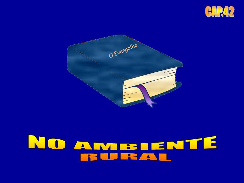 CAP.42 O Evangelho NO AMBIENTE RURAL