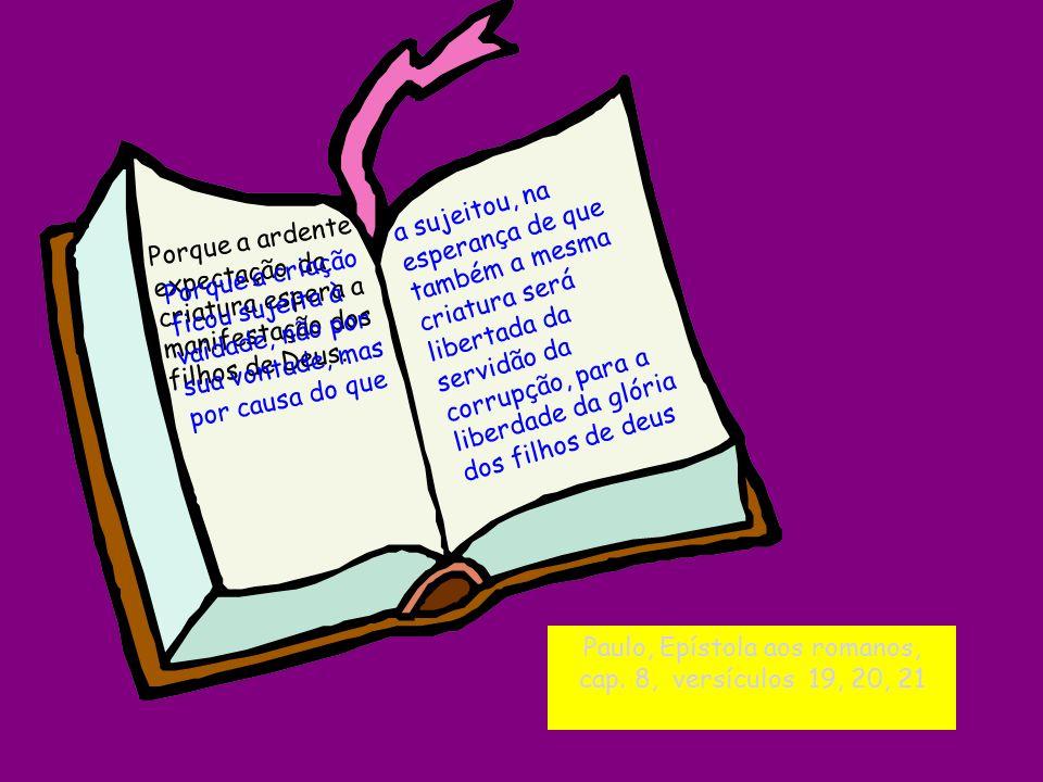 Paulo, Epístola aos romanos, cap. 8, versículos 19, 20, 21