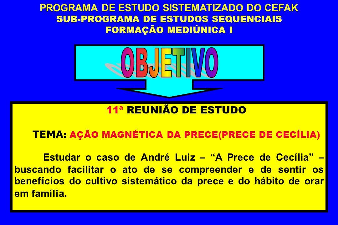 OBJETIVO PROGRAMA DE ESTUDO SISTEMATIZADO DO CEFAK