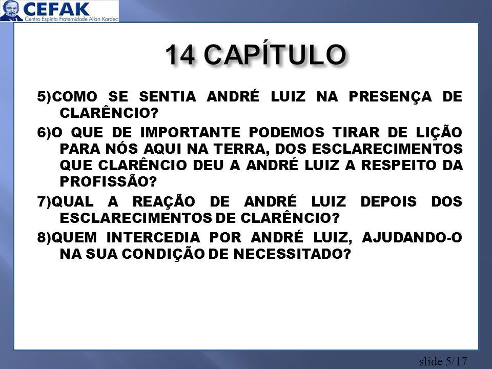 14 CAPÍTULO