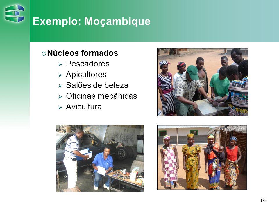 Exemplo: Moçambique Núcleos formados Pescadores Apicultores