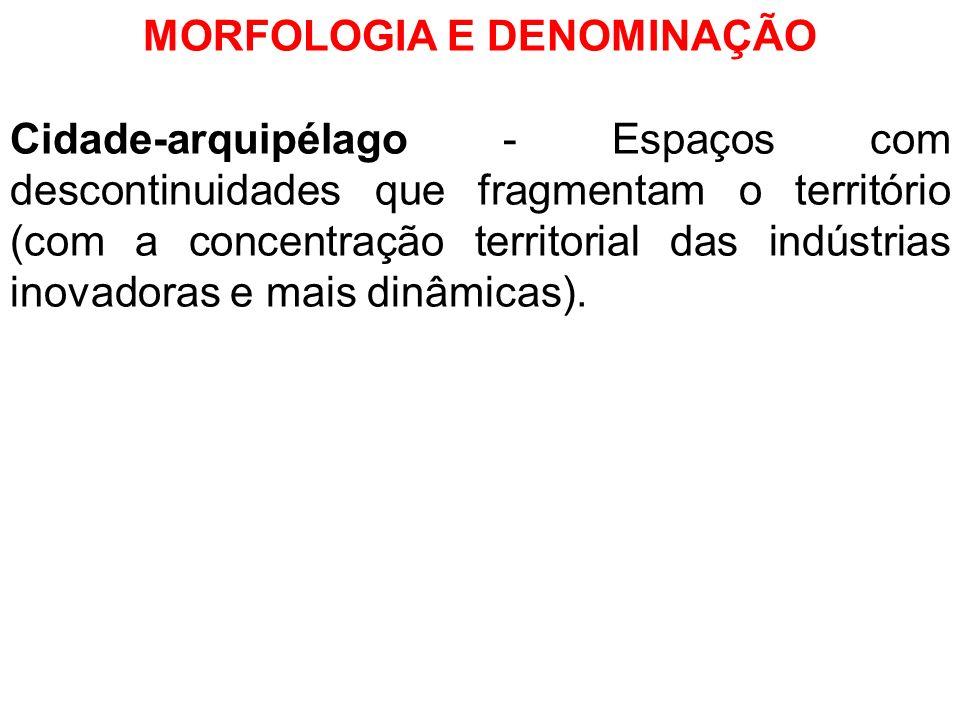 MORFOLOGIA E DENOMINAÇÃO