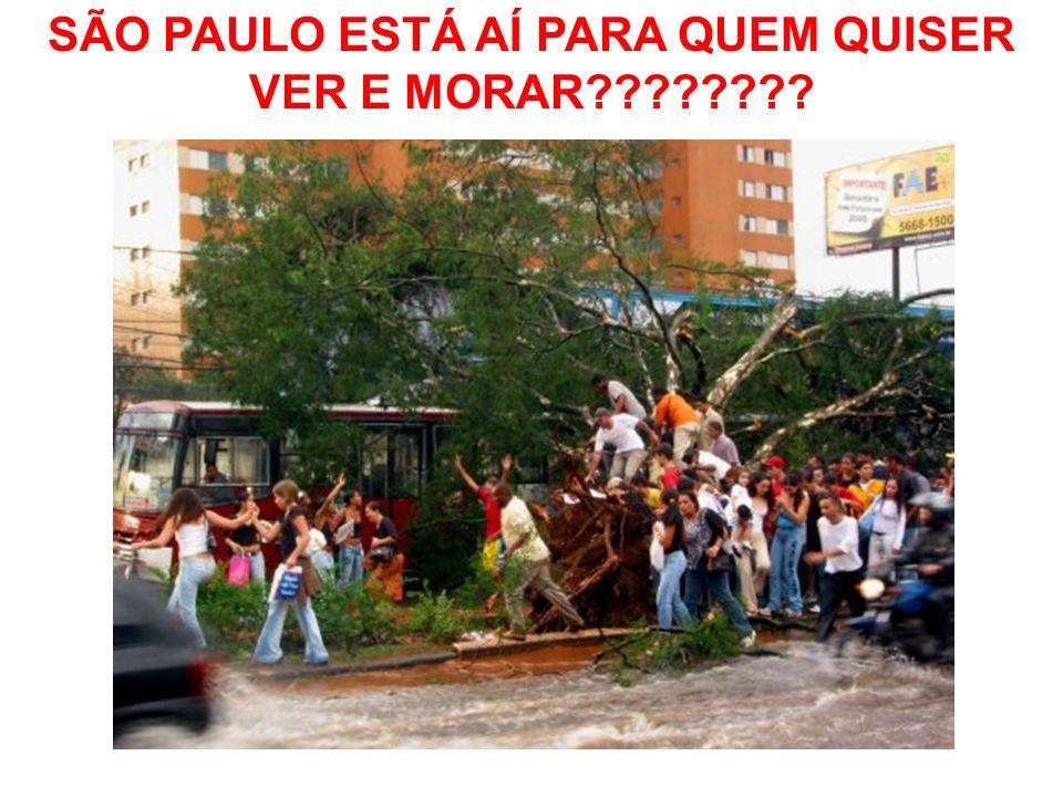 SÃO PAULO ESTÁ AÍ PARA QUEM QUISER VER E MORAR