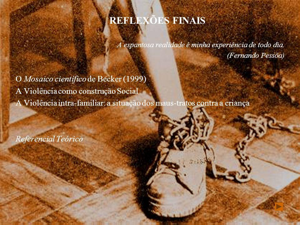 REFLEXÕES FINAIS O Mosaico científico de Becker (1999)