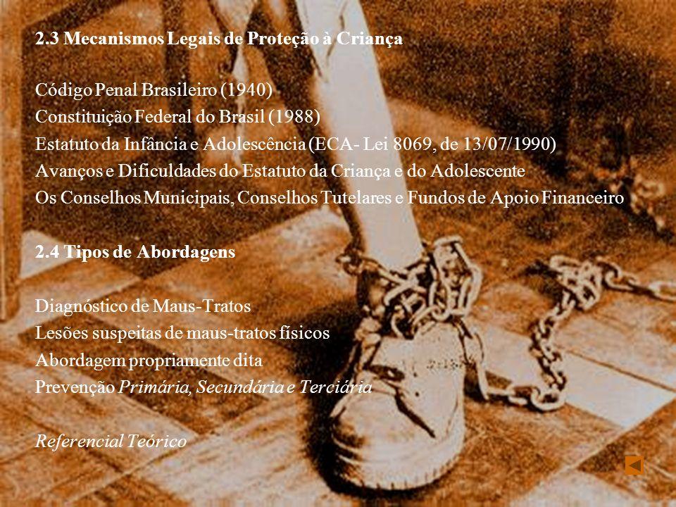 2.3 Mecanismos Legais de Proteção à Criança