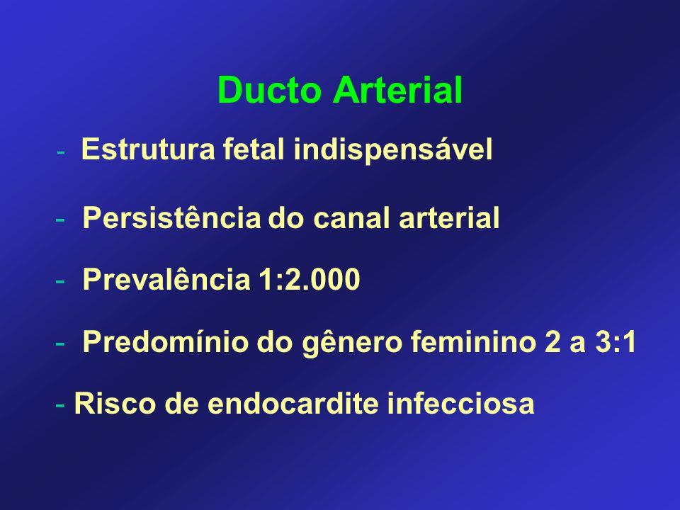 Ducto Arterial Persistência do canal arterial Prevalência 1:2.000