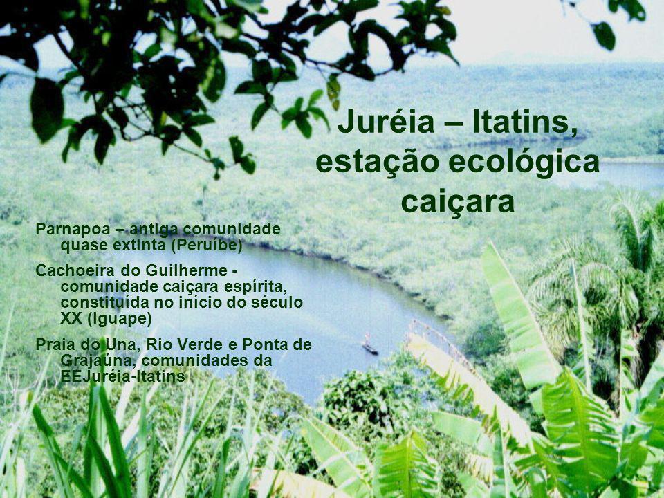 Juréia – Itatins, estação ecológica caiçara