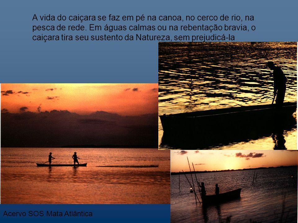 A vida do caiçara se faz em pé na canoa, no cerco de rio, na pesca de rede. Em águas calmas ou na rebentação bravia, o caiçara tira seu sustento da Natureza, sem prejudicá-la