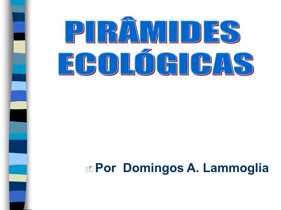 PIRÂMIDES ECOLÓGICAS Por Domingos A. Lammoglia