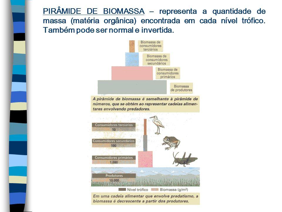 PIRÂMIDE DE BIOMASSA – representa a quantidade de massa (matéria orgânica) encontrada em cada nível trófico.