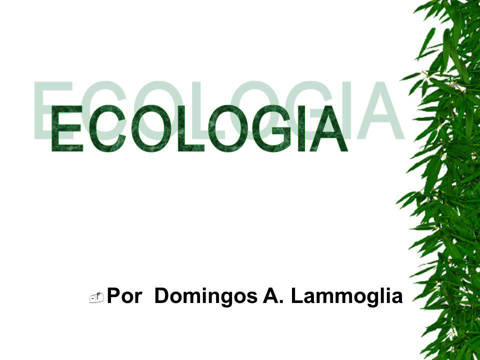 ECOLOGIA Por Domingos A. Lammoglia
