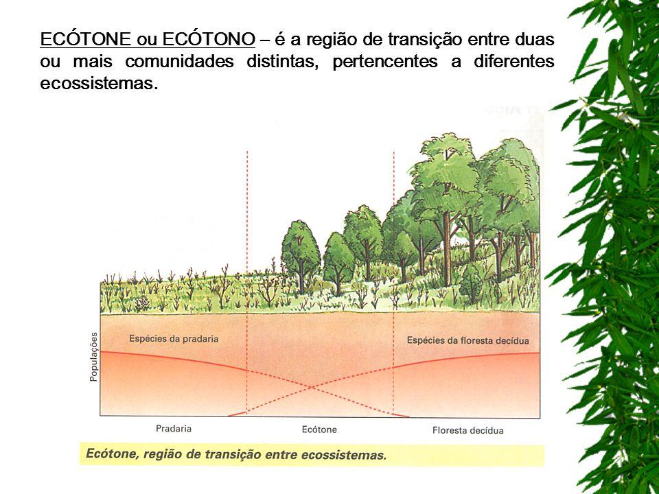 ECÓTONE ou ECÓTONO – é a região de transição entre duas ou mais comunidades distintas, pertencentes a diferentes ecossistemas.