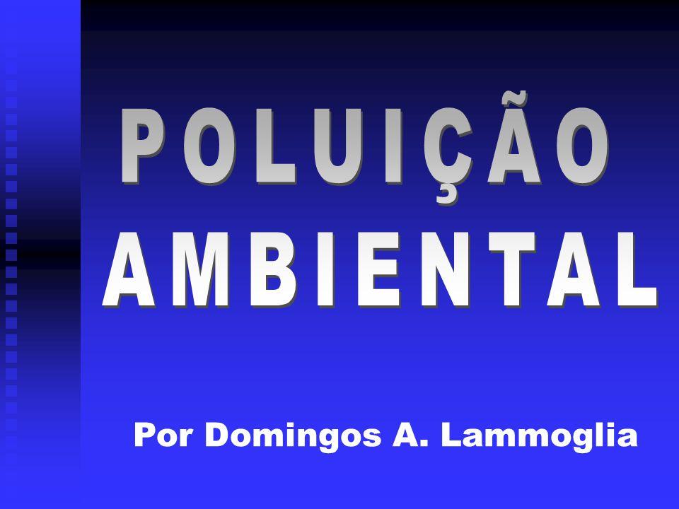 POLUIÇÃO AMBIENTAL Por Domingos A. Lammoglia
