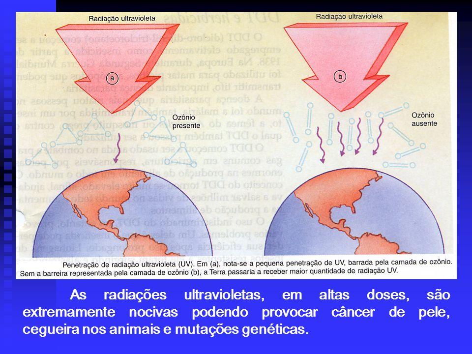 As radiações ultravioletas, em altas doses, são extremamente nocivas podendo provocar câncer de pele, cegueira nos animais e mutações genéticas.