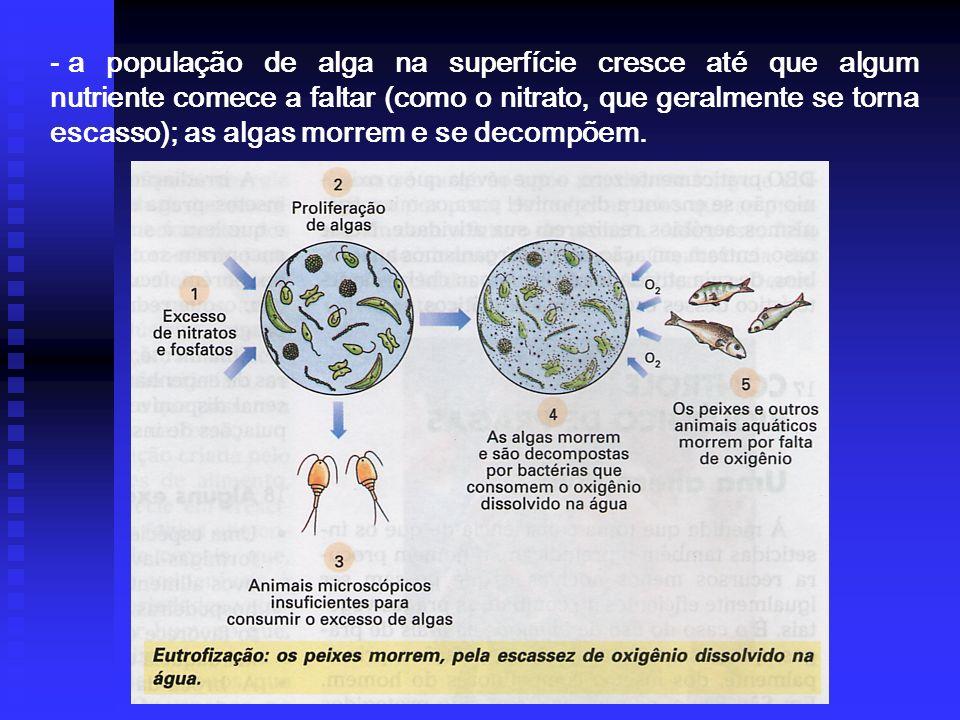 a população de alga na superfície cresce até que algum nutriente comece a faltar (como o nitrato, que geralmente se torna escasso); as algas morrem e se decompõem.