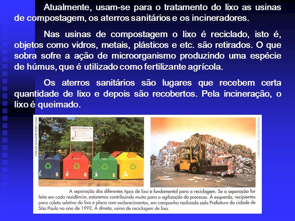 Atualmente, usam-se para o tratamento do lixo as usinas de compostagem, os aterros sanitários e os incineradores.