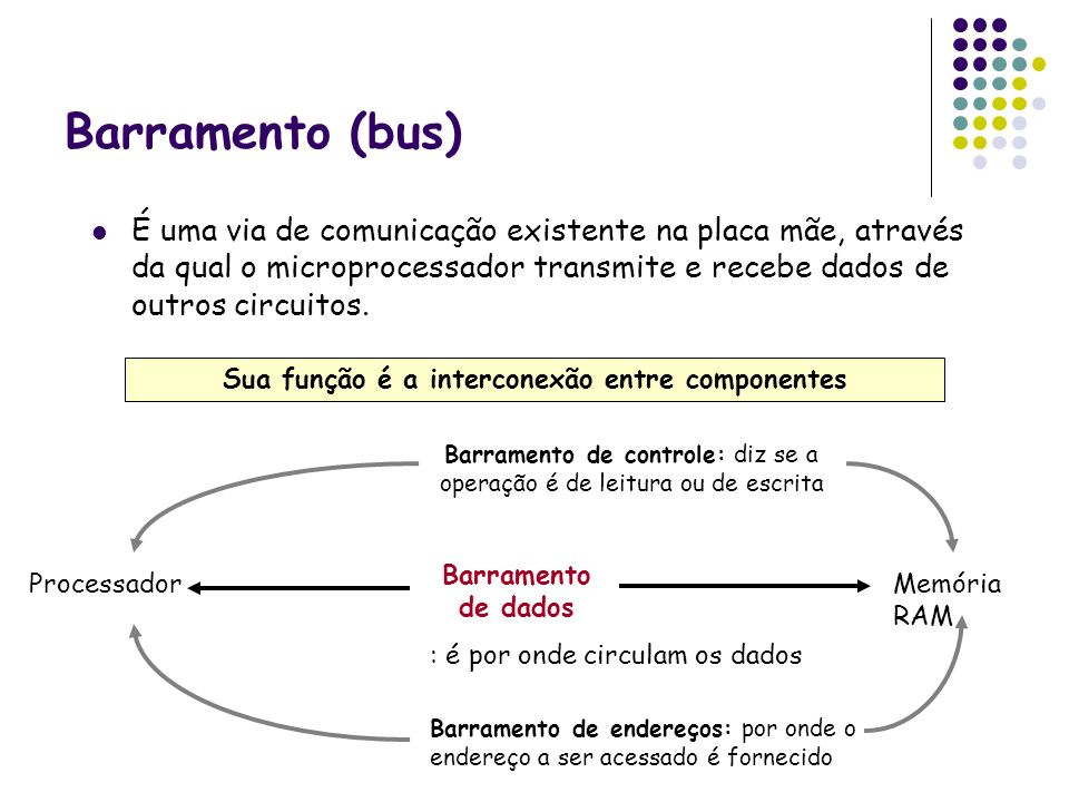 Sua função é a interconexão entre componentes