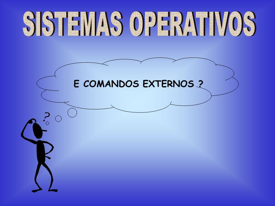 SISTEMAS OPERATIVOS E COMANDOS EXTERNOS