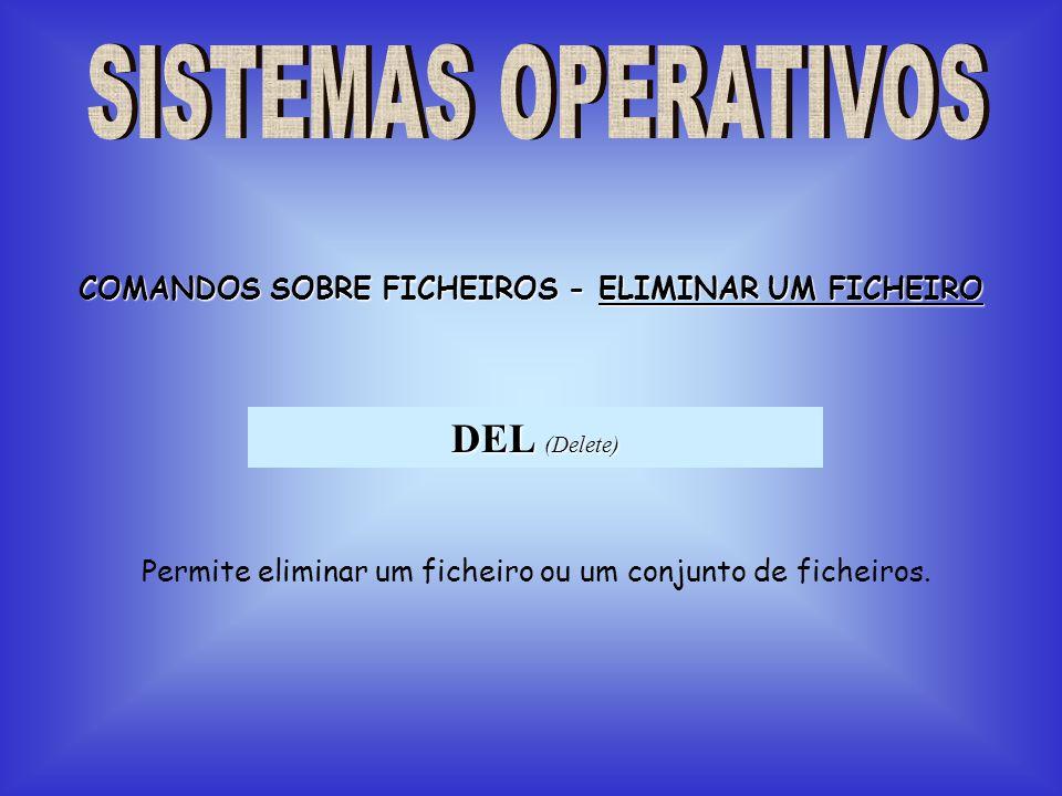 COMANDOS SOBRE FICHEIROS - ELIMINAR UM FICHEIRO