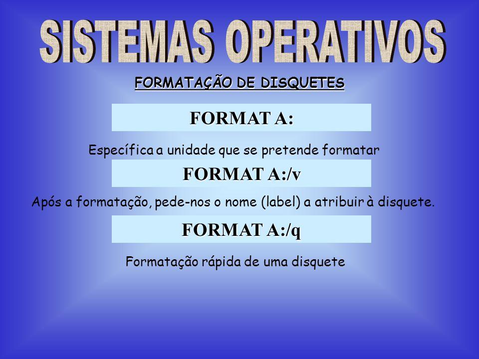 FORMATAÇÃO DE DISQUETES