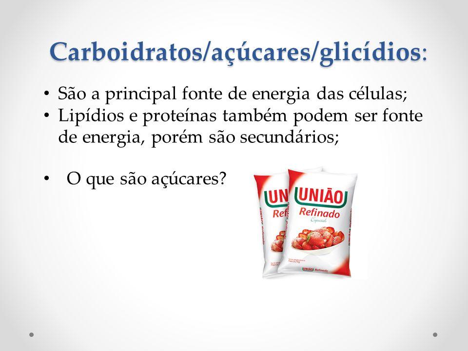 Carboidratos/açúcares/glicídios: