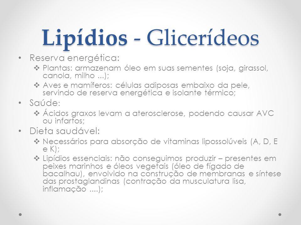 Lipídios - Glicerídeos