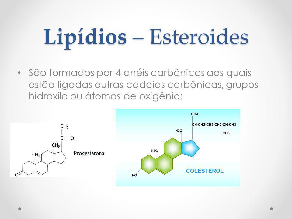 Lipídios – Esteroides São formados por 4 anéis carbônicos aos quais estão ligadas outras cadeias carbônicas, grupos hidroxila ou átomos de oxigênio: