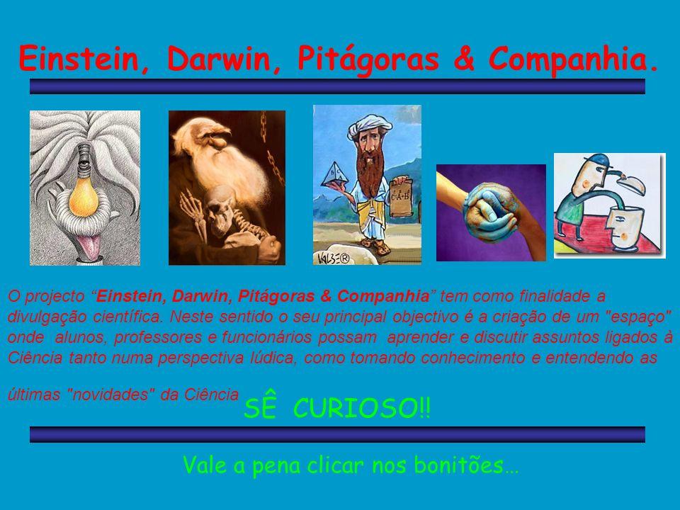 Einstein, Darwin, Pitágoras & Companhia.