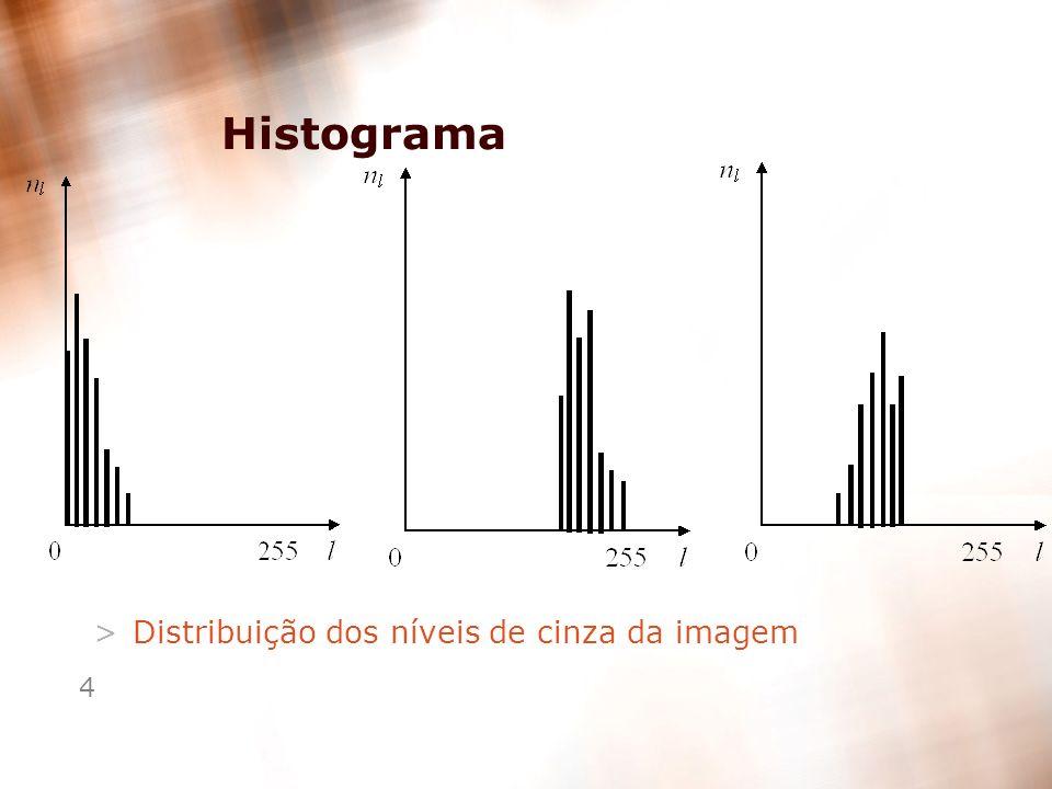Histograma Distribuição dos níveis de cinza da imagem
