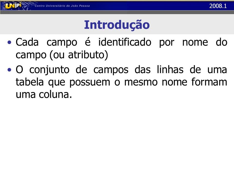 Introdução Cada campo é identificado por nome do campo (ou atributo)