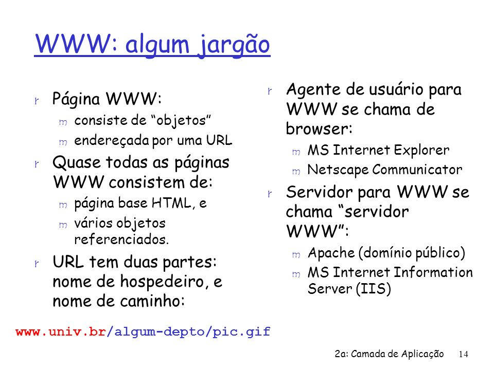 WWW: algum jargão Agente de usuário para WWW se chama de browser: