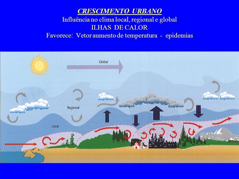 CRESCIMENTO URBANO Influência no clima local, regional e global ILHAS DE CALOR Favorece: Vetor aumento de temperatura - epidemias