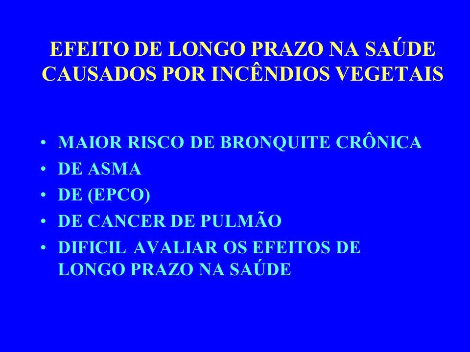 EFEITO DE LONGO PRAZO NA SAÚDE CAUSADOS POR INCÊNDIOS VEGETAIS