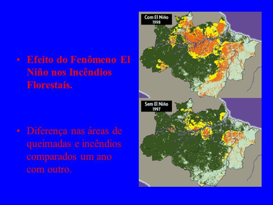 Efeito do Fenômeno El Niño nos Incêndios Florestais.