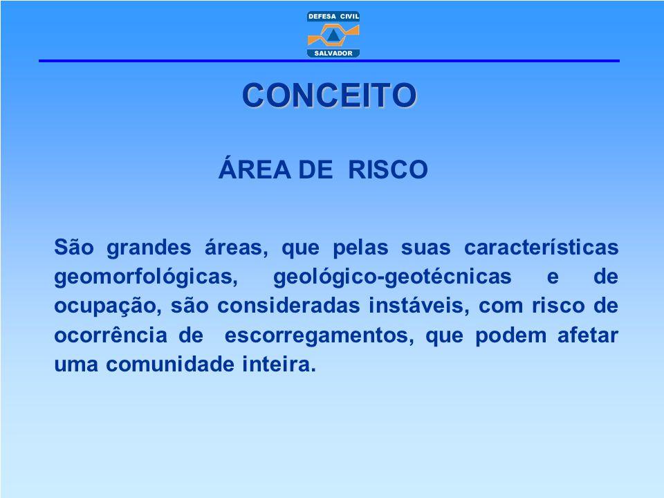 CONCEITO ÁREA DE RISCO.