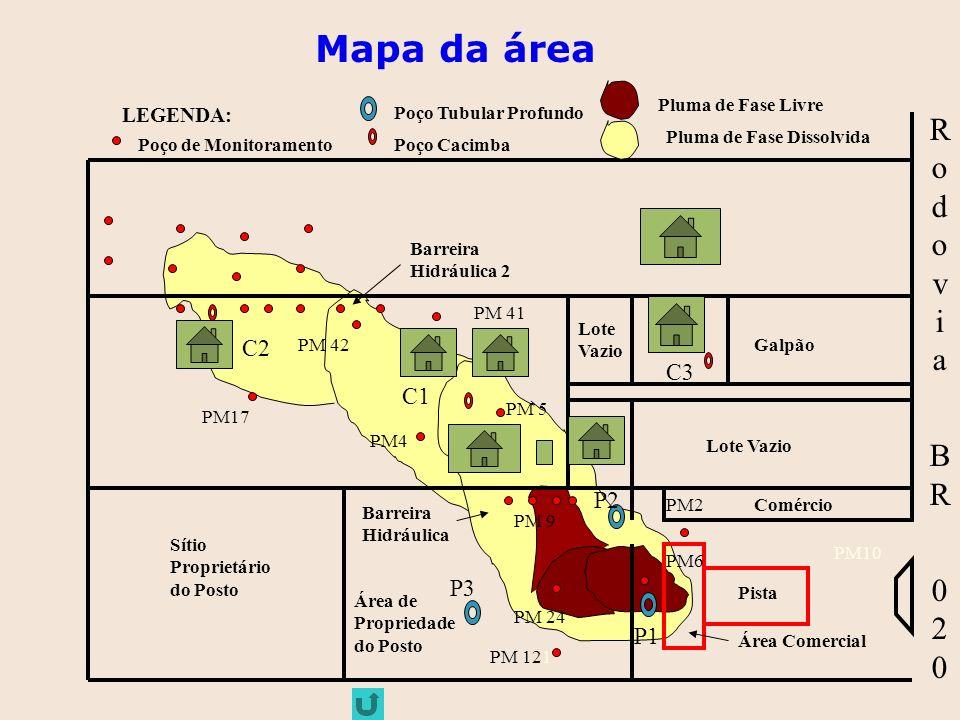 Mapa da área Rodovia BR 020 C2 C3 C1 P2 P3 P1 LEGENDA: