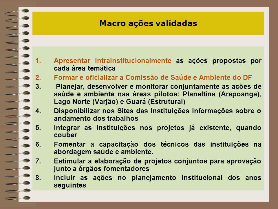 Macro ações validadas Apresentar intrainstitucionalmente as ações propostas por cada área temática.