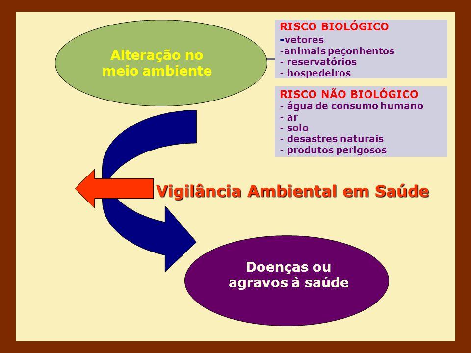 Alteração no meio ambiente Doenças ou agravos à saúde