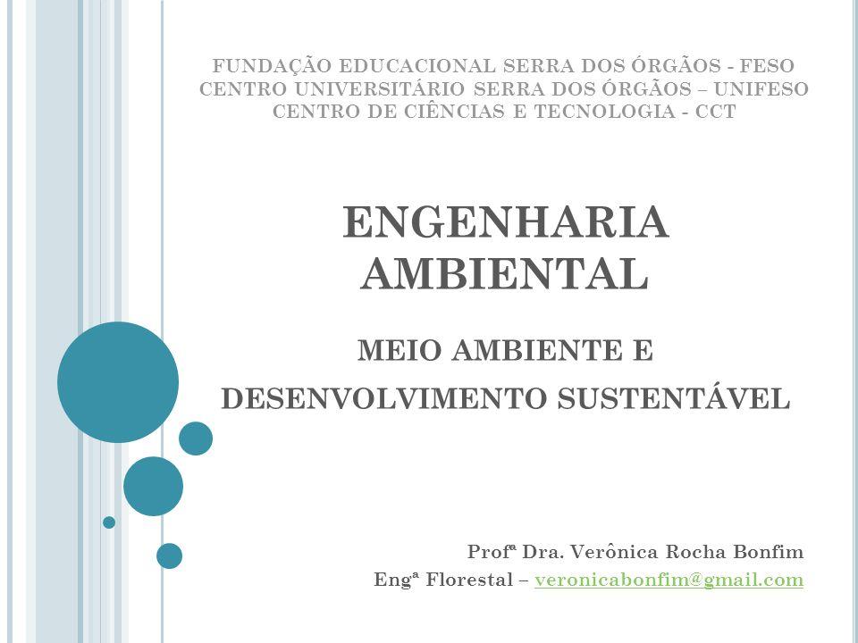ENGENHARIA AMBIENTAL MEIO AMBIENTE E DESENVOLVIMENTO SUSTENTÁVEL