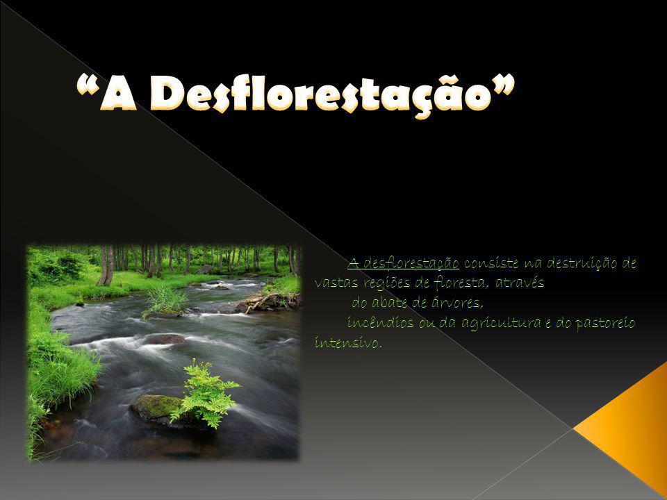 A Desflorestação A desflorestação consiste na destruição de vastas regiões de floresta, através. do abate de árvores,