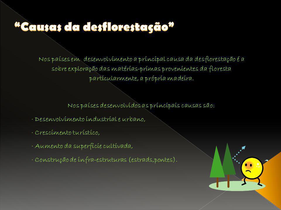 Causas da desflorestação